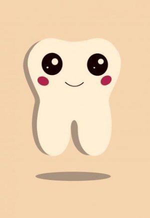 Caída del primer diente y el Ratoncito     Pérez