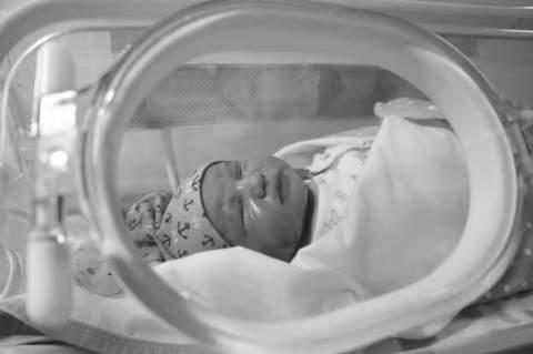 ingreso bebe neonatos