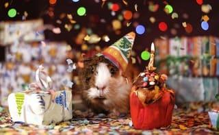fiestas de cumpleaños niños