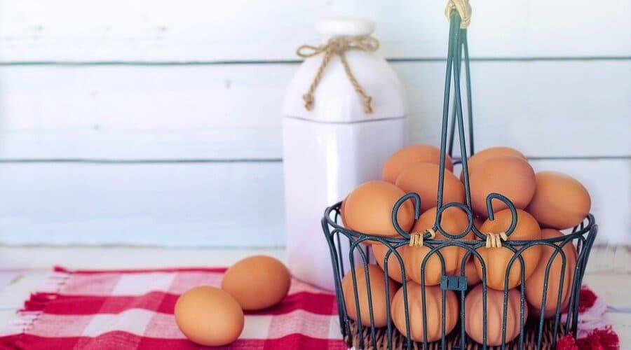 receta de mayonesa sin huevo y sin leche