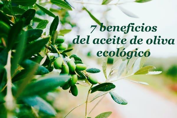 beneficios del aceite de oliva ecológico