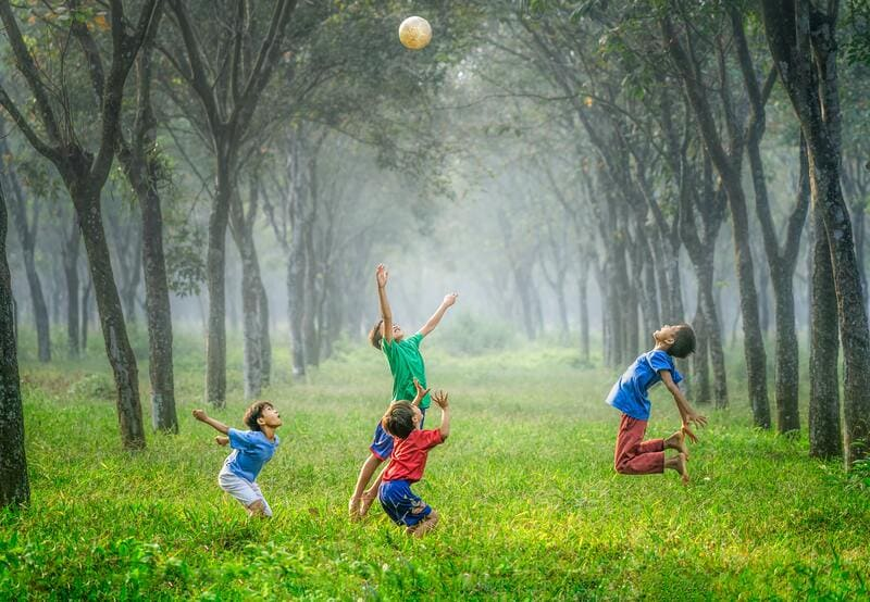 niños jugando naturaleza