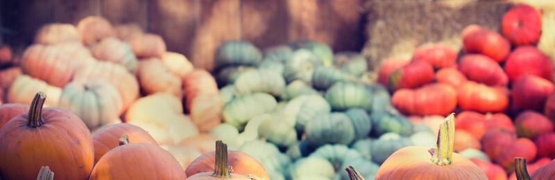 verduras recogidas en la fiesta de fin de la cosecha